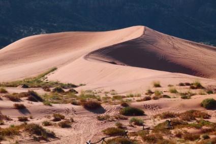pink_sand_dunes_utah_usa_219895